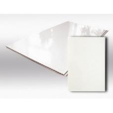 Панель пластиковая ПВХ белая глянцевая 2700 х 250 х 9 мм